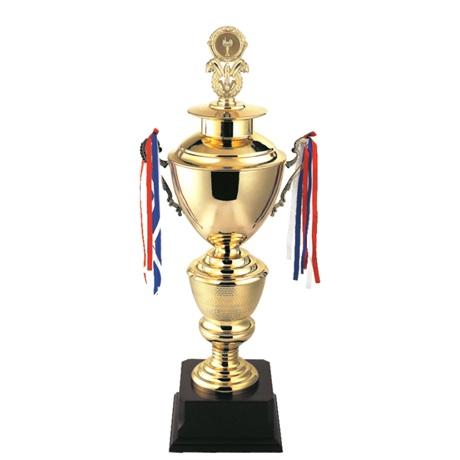 Cúp thể thao mạ vàng T220