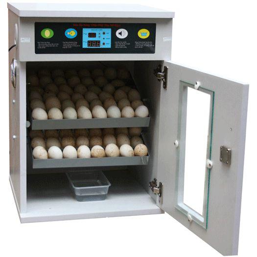 Máy ấp trứng 100 quả