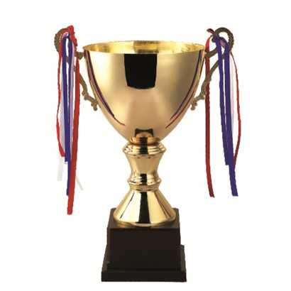 Cúp bóng đá hình chiếc cốc
