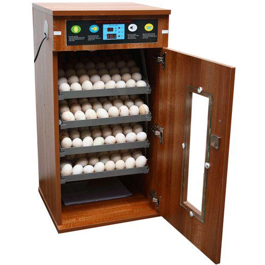 Máy ấp trứng 200 quả