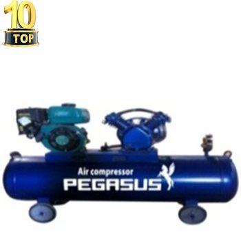 Máy nén khí chạy xăng Pegasus TM-V-0.25/8-100L
